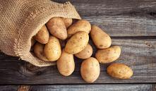 Лучшие сорта картофеля для выращивания в Беларуси