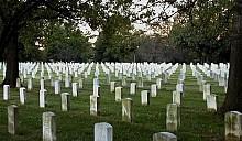 На рынках недвижимости появилась новая прибыльная ниша – кладбища