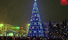 В Бресте главную елку зажгут 20 декабря
