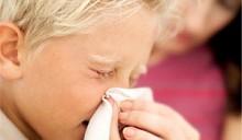 У 12 миллионов британцев нашли аллергию на собственное жилье