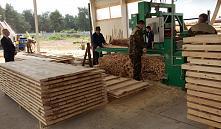 Более 19 млрд. рублей убытка нанесли государству управленцы в деревообрабатывающей отрасли