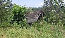 Заброшенные участки в Минской области приведут в порядок