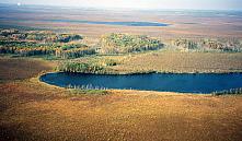 По охране земли в Витебской области прокуратура подготовила 309 актов