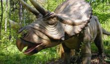 В Чижовке открывается парк с динозаврами