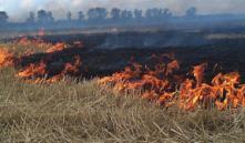 Горящие поля под Минском тушили с помощью Ми-8