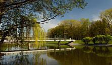 Часть комсомольского озера летом превратится в арт-зону