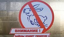 Жительница Таллина лишилась квартиры в наказание за проезд
