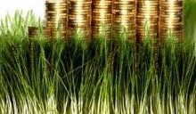 Земельные аукционы в июне