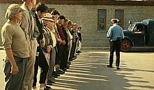 В Беларуси безработным можно будет считаться только 12 месяцев