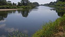 Фермы и автозаправки разрешат строить в водоохранных зонах