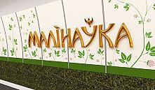 Станция метро «Малиновка» в начале июня примет первых пассажиров