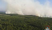 В экосистемах на юго-востоке Беларуси возобновились пожары