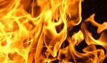 В Бобруйске произошел пожар на деревообрабатывающем предприятии