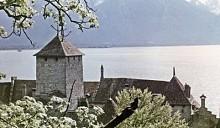 Швейцарские архитекторы придумали отель, полностью