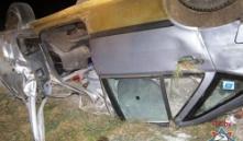 Чаусский район: при столкновении автомобиля с лосем пострадал пассажир