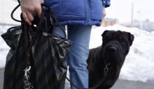 Собаковод, напавший на женщину-кинолога, задержан