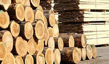 Андрей Кобяков: мы опоздали с модернизацией деревообработки