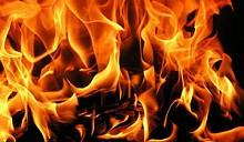 При пожаре в жилом доме в Докшицком районе погибли бабушка и внук
