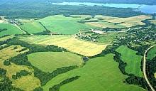 Проект указа: выделенный земельный участок нельзя будет продать в течение 8 лет