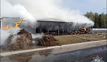 Причиной пожара на Ореховском льнозаводе считают поджог