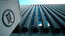 Всемирный банк одобрил лесной кредит для Беларуси в $40 млн